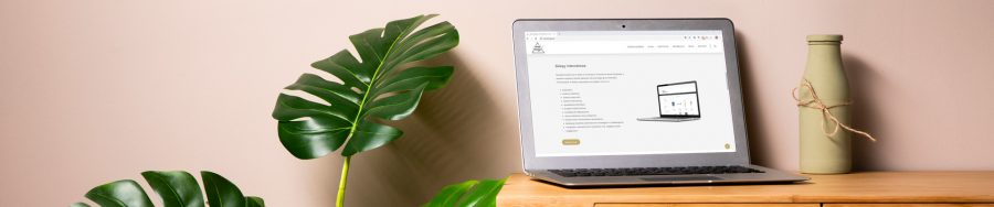 Jak powinna wyglądać dobrze zaprojektowana strona internetowa?